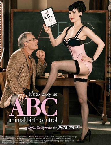 Animalbirthcontrol