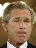 Bush_lip