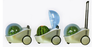 The Mobile Watermelon Cooler